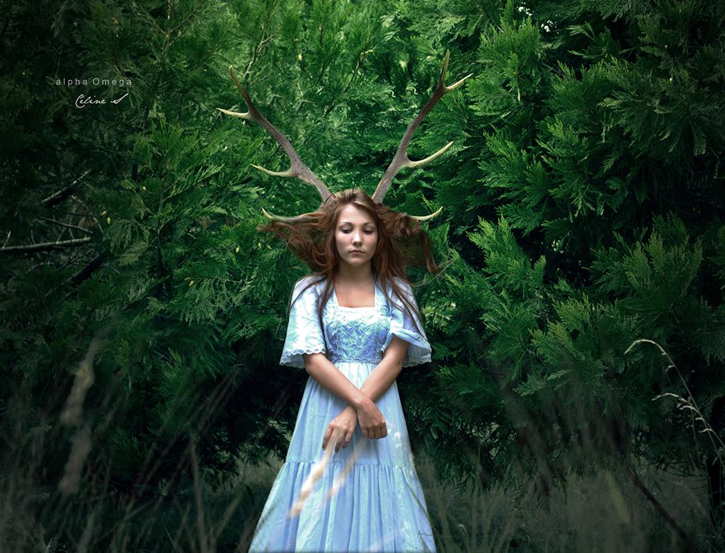 spirit_forest
