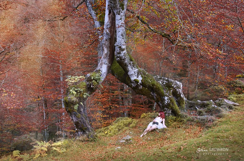 autumnsolstice